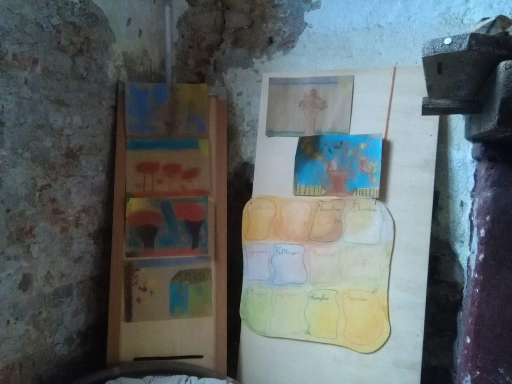 fattoria_didattica_primaria10